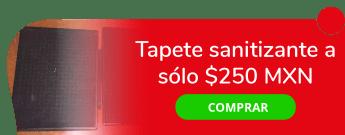 Tapete sanitizante a sólo $250 MXN - Alex Punk