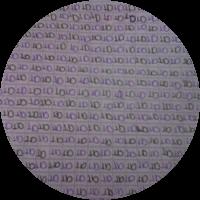 517a1ae431e93c6b2f0005f5
