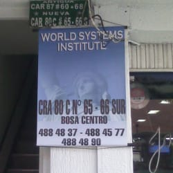 World Systems Institute en Bogotá
