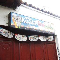 Feria Escolar Osito Koala Chía en Bogotá