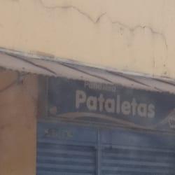 Pañalera Pataletas en Bogotá