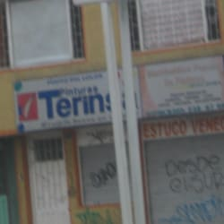 Pinturas Terinsa Carrera 68 con 26 en Bogotá