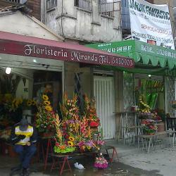 Floristería Miranda en Bogotá