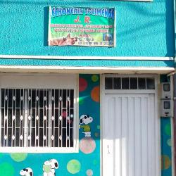 Lechonería Tolimense en Bogotá