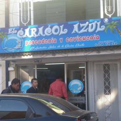 El Caracol Azul en Bogotá
