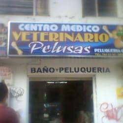 Veterinaria Pelusas en Bogotá