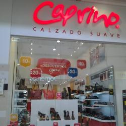 Calzado Caprino Centro Mayor en Bogotá