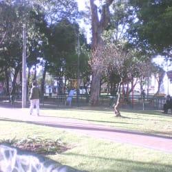 Humbolt en Bogotá