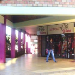 Las Gatas Medias Subazar en Bogotá