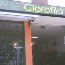 Tienda Clorofila Park Way en Bogotá