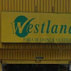 Westland Carrera 21 con 16 en Bogotá