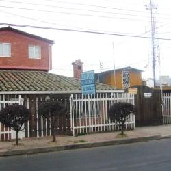 ANTORA ARTE EN CERÁMICA en Bogotá
