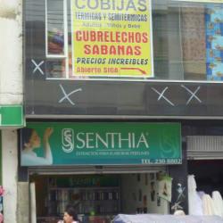 Senthia Calle 42A en Bogotá