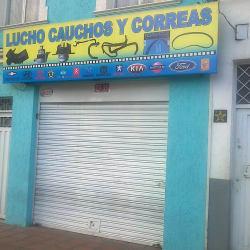 Lucho Cauchos y Correas en Bogotá