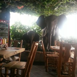 Restaurante Parque Safari  en Bogotá