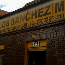 Carlos Sanchez M en Bogotá