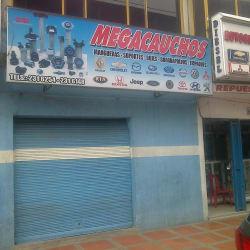 Megacauchos en Bogotá