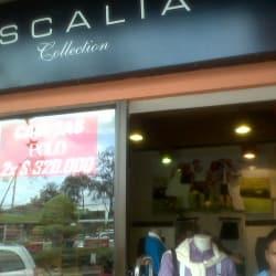 Escala Colections en Bogotá