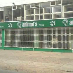 Animals Veterinaría en Bogotá