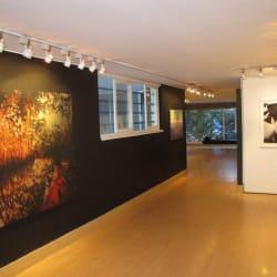 Beatriz Esguerra Arte en Bogotá