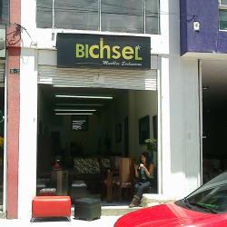 Bichsel en Bogotá