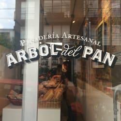 Arbol del Pan en Bogotá
