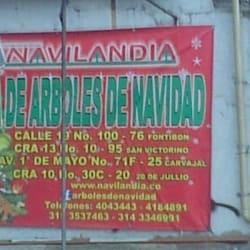 ArbolPlást en Bogotá