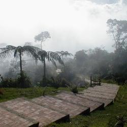 Parque Natural Chicaque en Bogotá