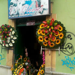 Floristería El Olivar en Bogotá