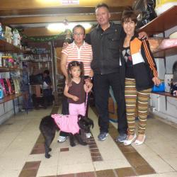 Organización de Protección y Defensa Animal Peluditos.Org en Bogotá