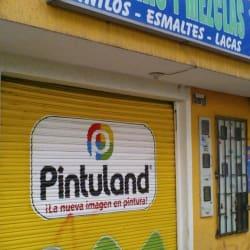 Pinturas y Mezclas Pintuland en Bogotá