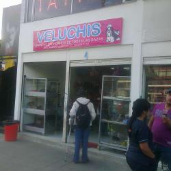 Veluchis en Bogotá