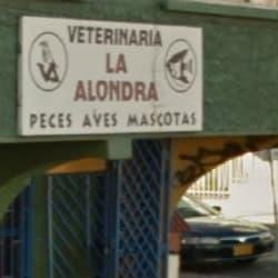 Veterinaria La Alondra en Bogotá
