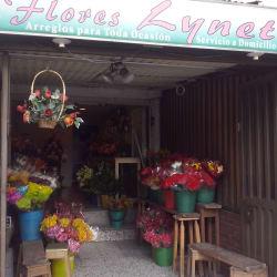 Flores Linet  en Bogotá