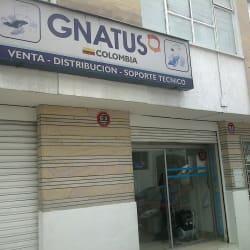 Gnatus en Bogotá