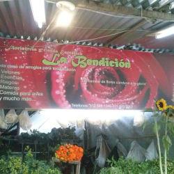 Floristería y Tienda Esotérica La Bendición en Bogotá