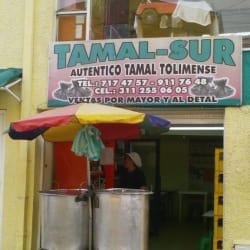 Tamal-sur en Bogotá
