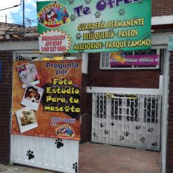 Coquetitos Pet Shop en Bogotá