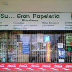 Su Gran Papelería  en Bogotá