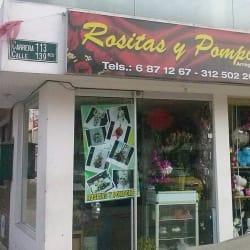 Rositas y Pompones en Bogotá