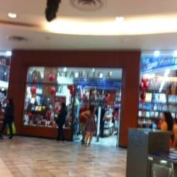 Libreria Antártica - Mall Plaza Vespucio en Santiago