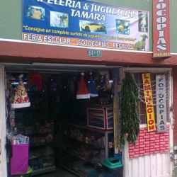 Papelería y Juguetería Tamara en Bogotá