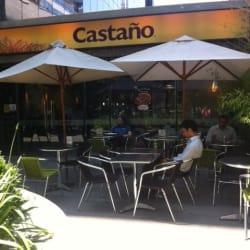 Castaño - La Concepción en Santiago