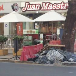 Juan Maestro - Lyon en Santiago