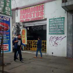 Radiadores Exostos en Bogotá