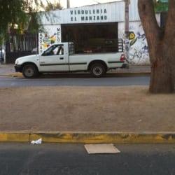 El Manzano- La Sinfonía en Santiago