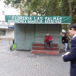 Florería Las Palmas - Providencia  en Santiago