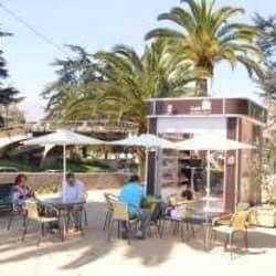 Café al Aire Libro - Plaza Pedro de Valdivia en Santiago