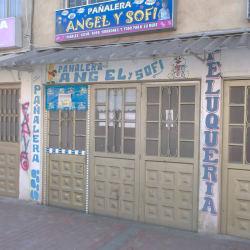 Pañalera Ángel Y Sofí en Bogotá
