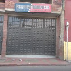 Ferricentrogenesis en Bogotá